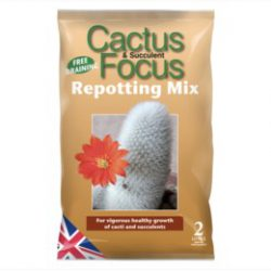 Cactus / Succulent – Repotting Mix