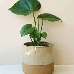 Lago Pot Round – Classic Cream