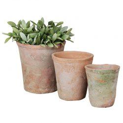 Aged Terracotta Pot