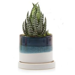 Minute Planter – Blue Green – 7CM
