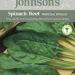 SPINACH BEET Perpetual S
