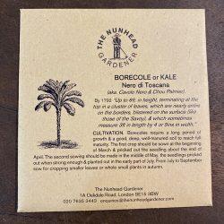 Kale – Nero di Toscano