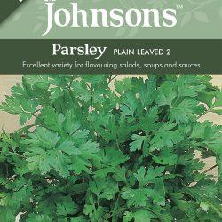 PARSLEY Plain Leaved 2