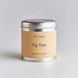 St. Eval Scented Tin Candle – Fig Tree