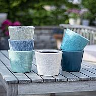 Old Style Dutch Pot Asst 6 Colours