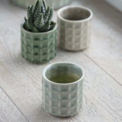 Sorrento Pot in Small Sage