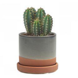 Minute Planter – Terracotta – 7CM