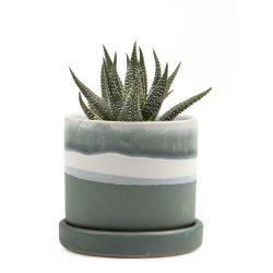 Minute Planter – Matte Green – 7CM
