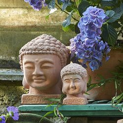 BUDDHA – NATUR – SMALL –  10  x 10  cm