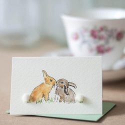 Mini Rabbits kissing